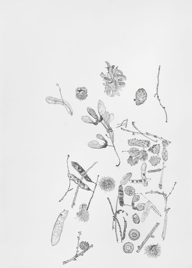 Ausstellung-2020-LvH-Brigitte-von-Savigny-01-Bleistiftzeichnung